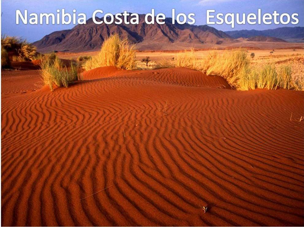 Costa de los Esqueletos