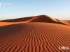 Dunas de Libia